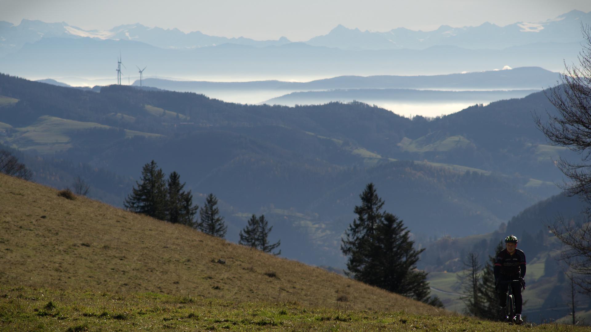 Vaast Gravelbike im Schwarzwald