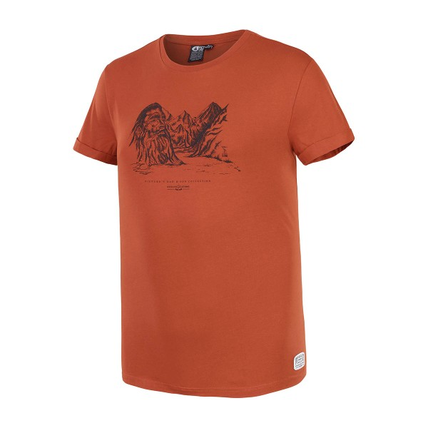 Picture Viking D&S T-Shirt brick 19/20